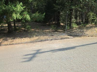 5202 WOODED GLEN RD, Grizzly Flats, CA 95636 - Photo 2