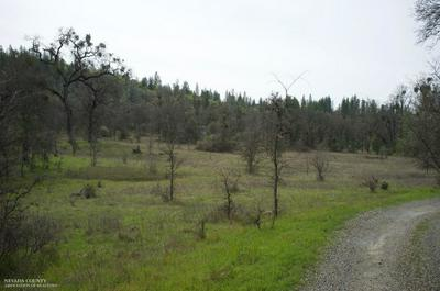 9902 TEXAS HILL RD, Oregon House, CA 95962 - Photo 2