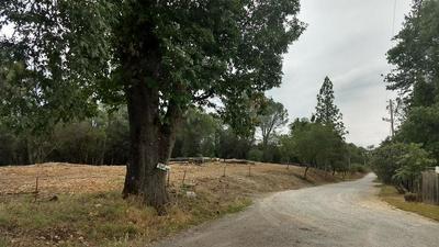 10 TULLIS MINE ROAD, Diamond Springs, CA 95619 - Photo 1
