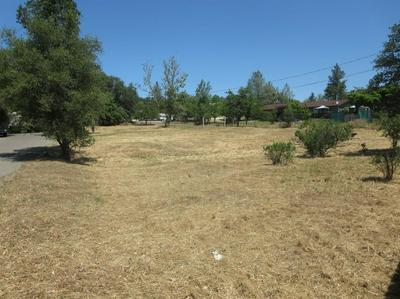 3993 PANTHER LN, Diamond Springs, CA 95619 - Photo 2