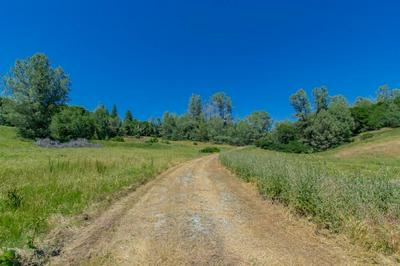 18171 HALE RD, Volcano, CA 95689 - Photo 2