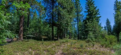 0 FERRARI MILL ROAD, Pollock Pines, CA 95726 - Photo 2