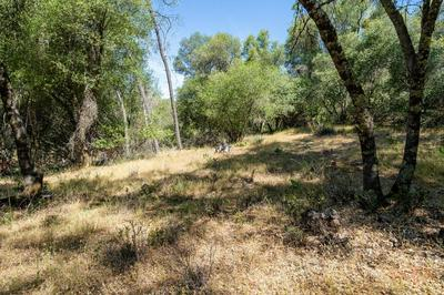 0 5 ACRES QUAIL RUN ROAD, Placerville, CA 95667 - Photo 2