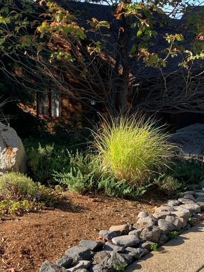 128 SIERRA BLANCA CT, Grass Valley, CA 95945 - Photo 2