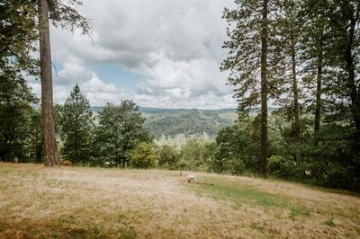 20188 BUCK RIDGE RD, Grass Valley, CA 95949 - Photo 2