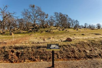0 HAMMONTON BLUFF PARCEL 7, Smartsville, CA 95977 - Photo 2