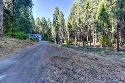4541 JENKINSON CIR, Pollock Pines, CA 95726 - Photo 2