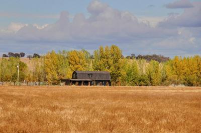 16015 CARBONDALE RD, Sloughhouse, CA 95683 - Photo 1