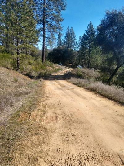 1 SLIGER MINE ROAD, Greenwood, CA 95635 - Photo 1