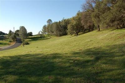 0 OTTER PLACE, Cool, CA 95614 - Photo 2