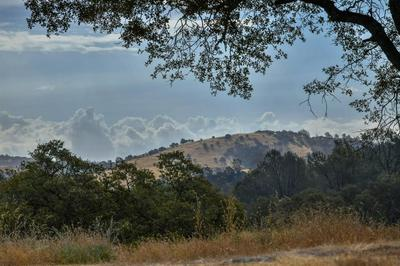 0 LOT 19 DEER HOLLOW TRAIL, Browns Valley, CA 95918 - Photo 1