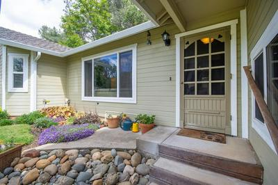 2829 CANAL CT, Placerville, CA 95667 - Photo 2