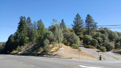 100 TRILLIUM LN, Greenwood, CA 95635 - Photo 1