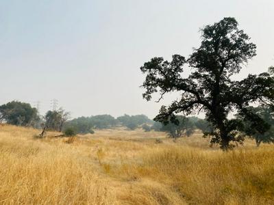 2300 HORSESHOE DR S, Copperopolis, CA 95228 - Photo 2