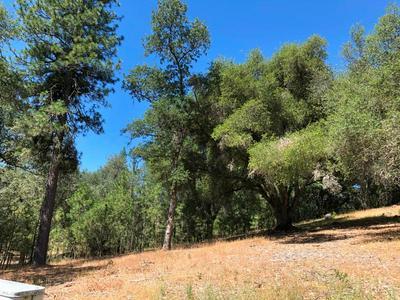 21930 LYONS BALD MOUNTAIN RD, Sonora, CA 95370 - Photo 2