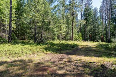 4781 HUGGY BEAR LN, Grizzly Flats, CA 95636 - Photo 1