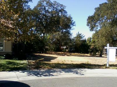4717 DEWEY ORCHARD CT, Fair Oaks, CA 95628 - Photo 2