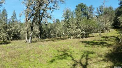 3581 STATE HIGHWAY 193, Cool, CA 95635 - Photo 2
