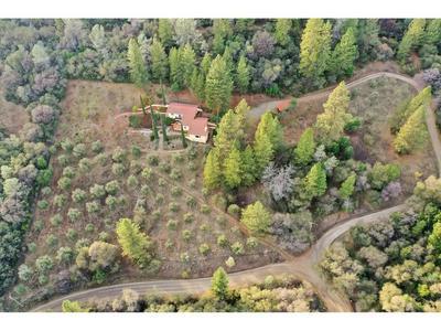 12180 REGENT WAY, Oregon House, CA 95962 - Photo 1