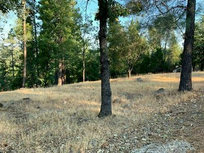 5015 SHOOTING STAR RD, Pollock Pines, CA 95726 - Photo 1
