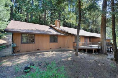 3101 AMBER TRL, Pollock Pines, CA 95726 - Photo 1