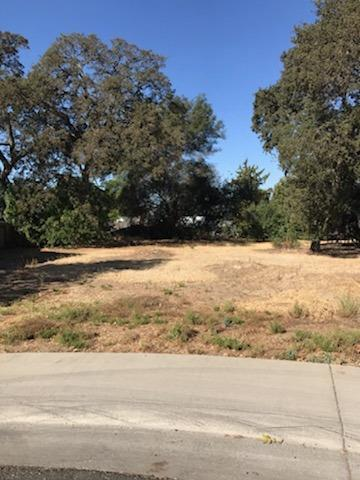 4717 DEWEY ORCHARD CT, Fair Oaks, CA 95628 - Photo 1
