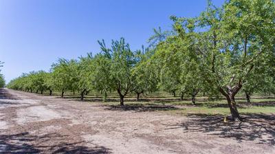 16825 LAMPLEY RD, Hickman, CA 95323 - Photo 2