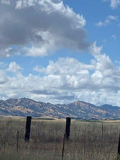 916 MOODY SLOUGH ROAD, Winters, CA 95694 - Photo 1
