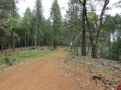 0 PARCEL 17 CABLE ROAD, Camino, CA 95709 - Photo 2