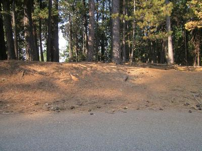 0 PIONEER DRIVE, Grizzly Flats, CA 95636 - Photo 1