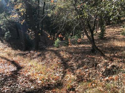20269 HASTI ACRS, Grass Valley, CA 95945 - Photo 2