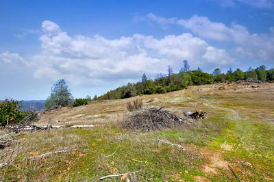 0 SOUTH 36 ACRES, Greenwood, CA 95635 - Photo 1