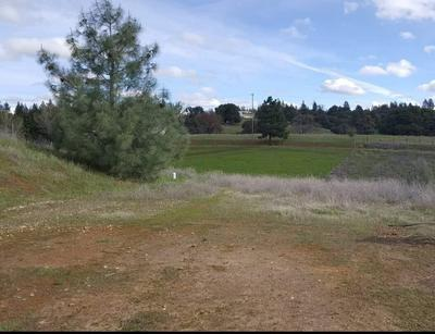 17145 RED MULE RD, Fiddletown, CA 95629 - Photo 2