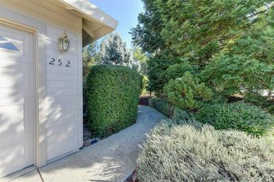 252 INCLINE DR, COLFAX, CA 95713 - Photo 2