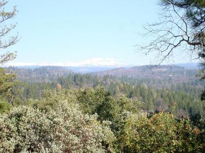 0 VICTORY MINE RD., PLACERVILLE, CA 95667 - Photo 2
