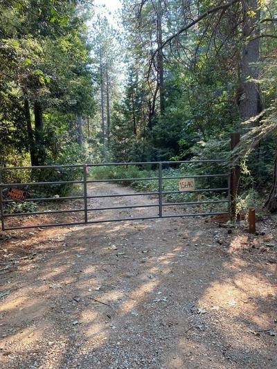 0 DE GROOT LANE, Camptonville, CA 95922 - Photo 2