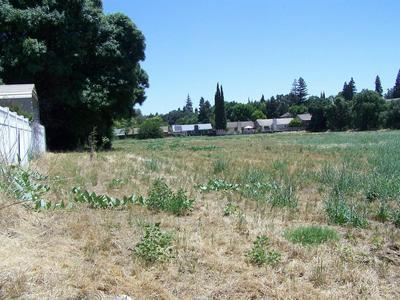 919 OLD STOCKTON RD, Oakdale, CA 95361 - Photo 2