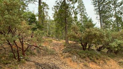0 MT. PLEASANT, Grizzly Flats, CA 95636 - Photo 2