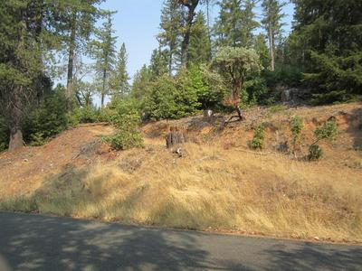 3377 LUPINE LN, Placerville, CA 95667 - Photo 2