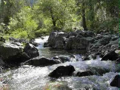 17330 SPANISH MINE ROAD, Washington, CA 95986 - Photo 1