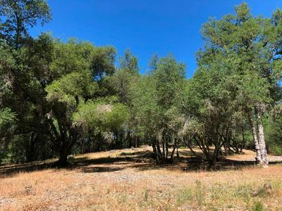 21930 LYONS BALD MOUNTAIN RD, Sonora, CA 95370 - Photo 1