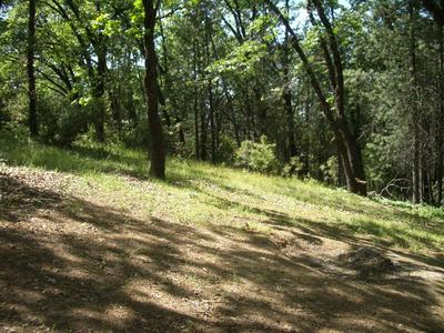 2420 PLEASANT VALLEY RD, Placerville, CA 95667 - Photo 2
