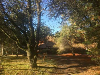 0 -0000 SAN DOMINGO ROAD, Murphys, CA 95247 - Photo 2
