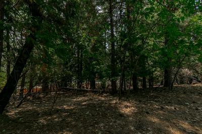 5480 DAISY DR, Pollock Pines, CA 95726 - Photo 1
