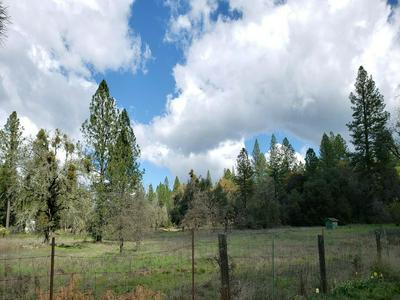 13111 RICES CROSSING RD, Oregon House, CA 95962 - Photo 2