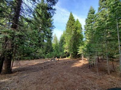 3187 RIDGECREST WAY, Pollock Pines, CA 95726 - Photo 2