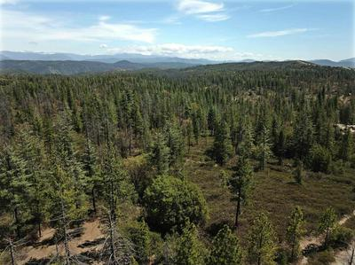 0 DOGTOWN ROAD, Coulterville, CA 95311 - Photo 2