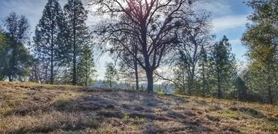 0 SLIGER MINE ROAD, Greenwood, CA 95635 - Photo 2