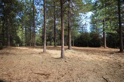 0 IOWA HILL ROAD, Colfax, CA 95713 - Photo 2