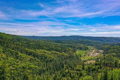15973 STATE HIGHWAY 49, Camptonville, CA 95922 - Photo 1